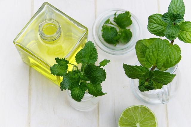 Les plantes médicinales vont-elles être interdite ?